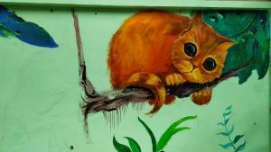 墙上的橘猫