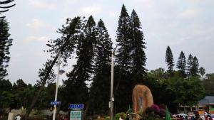 植物园入口